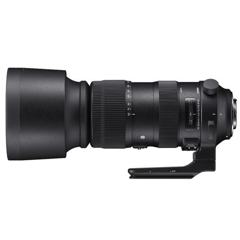 Sigma 60-600mm F/4.5-6.3 DG OS HSM Sports Canon of Nikon